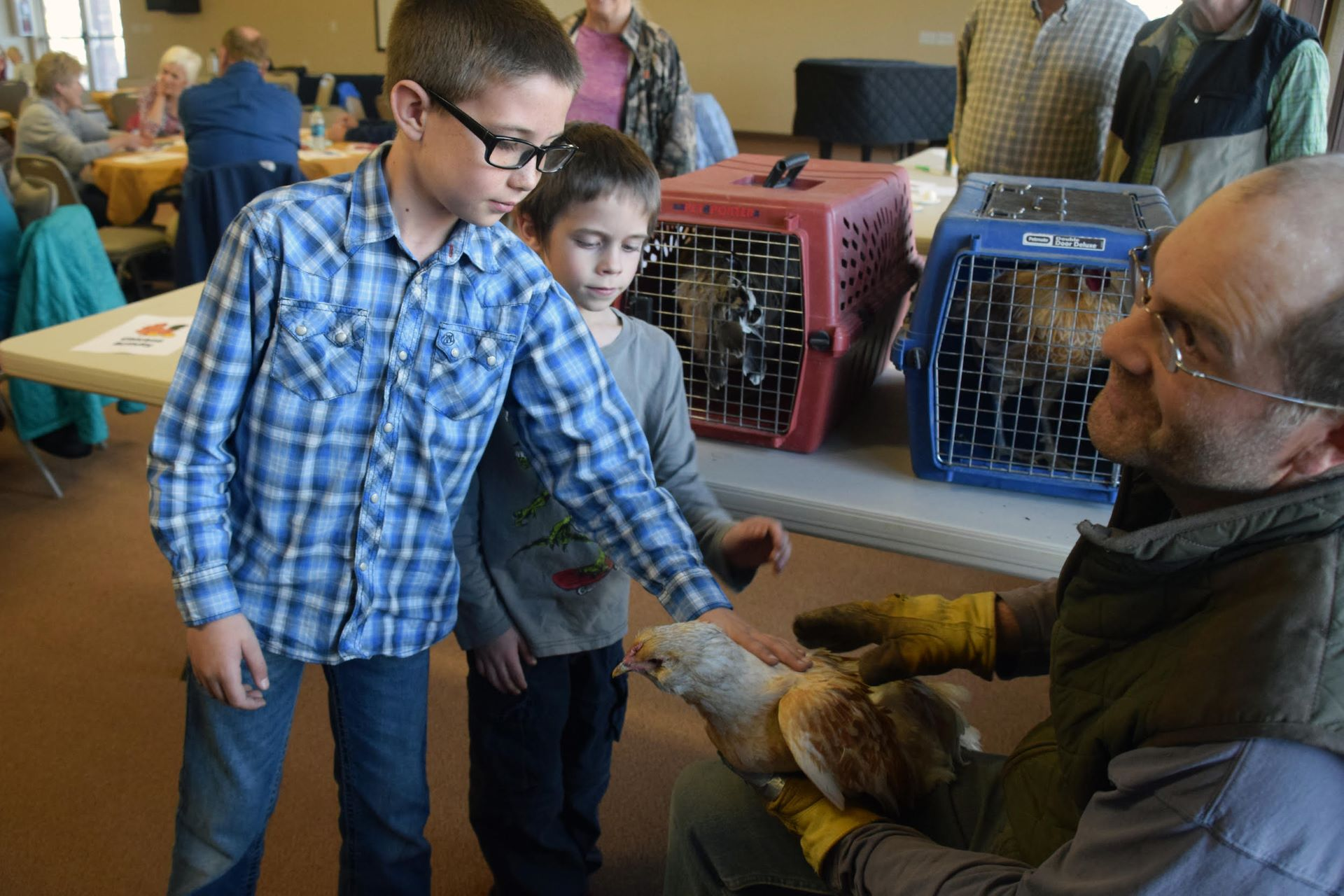 """Families attending the community dinner exploring """"Our Heritage of Chickens"""" learned about raising hens from a local farmer. Photo courtesy Entrada Institute, Inc."""
